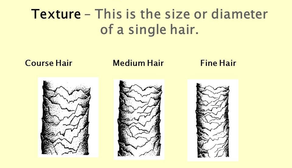 Fine, Medium And Coarse Hair-Different Types of Hair Textures | Natural Hair Types